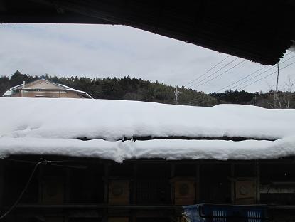 積雪イメージ