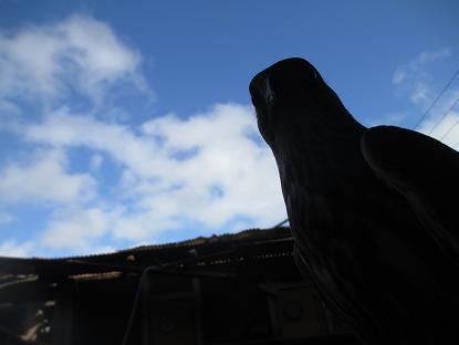朝の天気はなんだったのか・・・イメージ